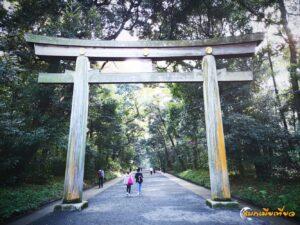 ศาลเจ้าเมจิ (Meiji Shrine) ศาลเจ้าเก่าแก่ กับป่าใจกลางเมือง